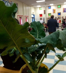 Broccoli leaves from Chickadee Creek Farm and Farmer Jess Niederer were stars alongside NJDA Secretary Doug Fisher at our Garden State on Your Plate event at Community Park Elementary School in early October.
