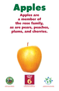 Apples_Facts_Signs6