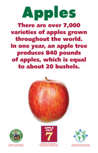 Apples_Facts_Signs7