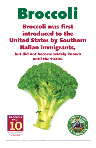 Broccoli_Facts_Signs10