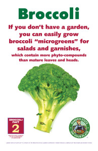 Broccoli_Facts_Signs2