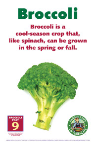 Broccoli_Facts_Signs9