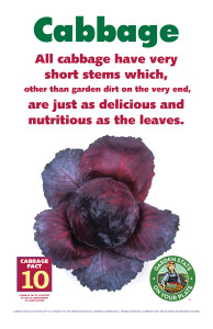 Cabbage_Facts_Signs10
