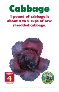 Cabbage_Facts_Signs4