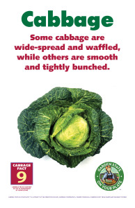 Cabbage_Facts_Signs9