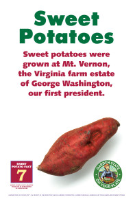 Sweet_Potato_Facts_Signs7
